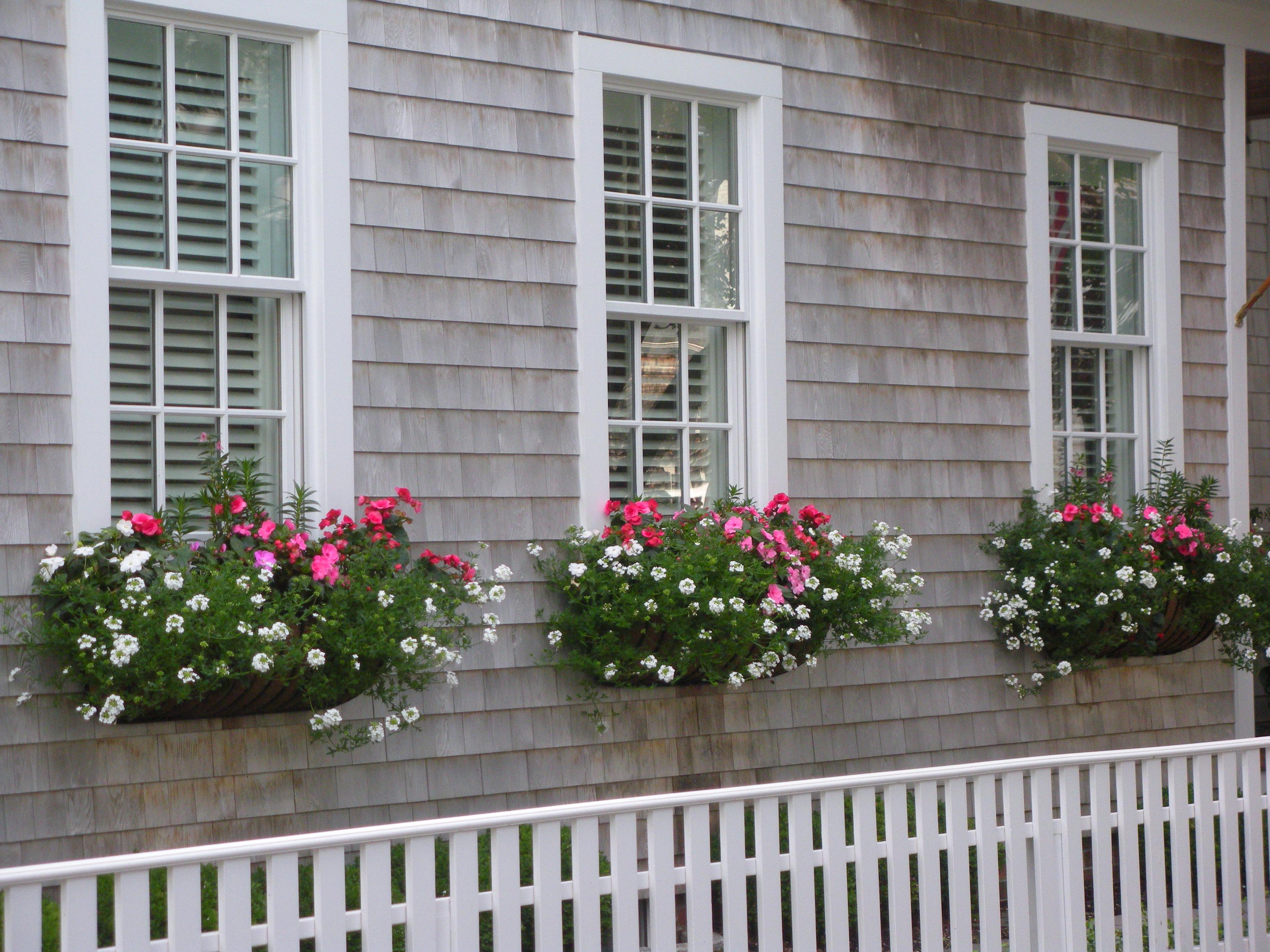 Window Boxes in Edgartown
